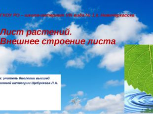 ГКОУ РО – школа-интернат VIII вида № 1 г. Новочеркасска Лист растений. Внешне