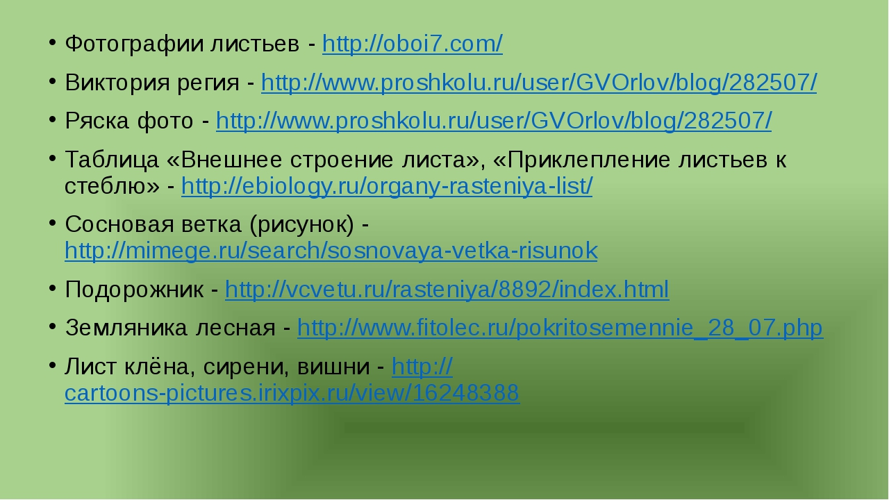 Фотографии листьев - http://oboi7.com/ Виктория регия - http://www.proshkolu...