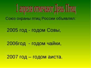 Союз охраны птиц России объявлял: 2005 год - годом Совы, 2006год - годом чайк