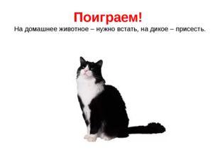 Поиграем! На домашнее животное – нужно встать, на дикое – присесть.