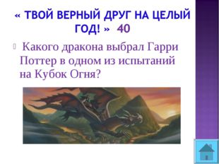 Какого дракона выбрал Гарри Поттер в одном из испытаний на Кубок Огня?