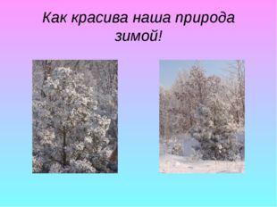 Как красива наша природа зимой!