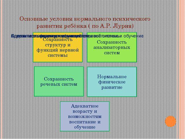 Основные условия нормального психического развития ребёнка ( по А.Р. Лурия)