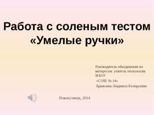 Новокузнецк, 2014 Руководитель объединения по интересам: учитель технологии М