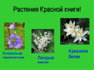 Растения Красной книги! Колокольчик персиколистный Ландыш майский Кувшинка бе