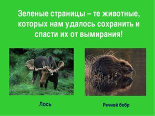Зеленые страницы – те животные, которых нам удалось сохранить и спасти их от