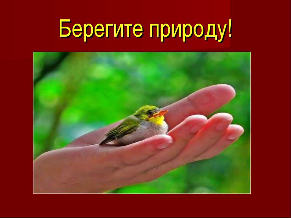 Берегите природу!