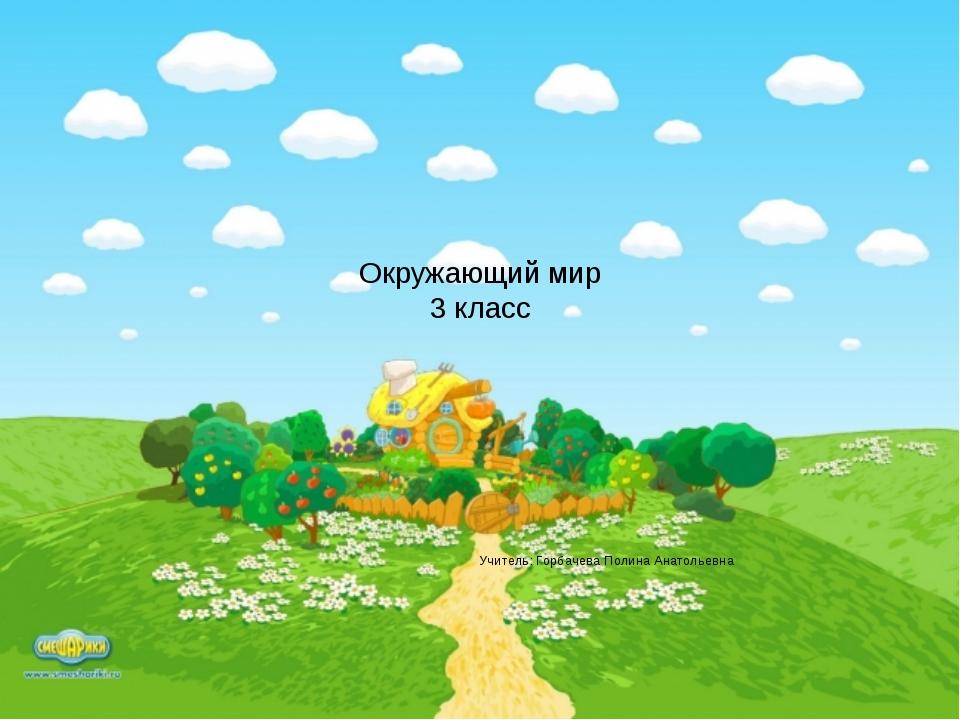 Окружающий мир 3 класс Учитель: Горбачева Полина Анатольевна