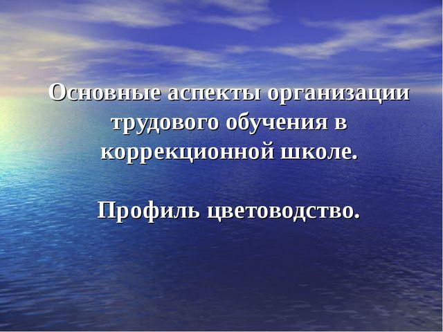 Основные аспекты организации трудового обучения в коррекционной школе. Профил...