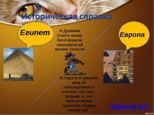 Египет Европа В Древнем Египте кошку боготворили, оказывали ей всякие почест