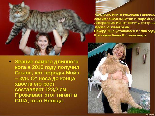 Звание самого длинного кота в 2010 году получил Стьюн, кот породы Мэйн – кун....