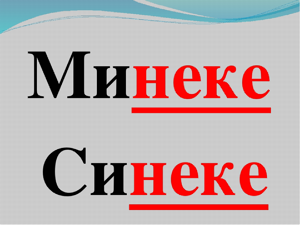 Минеке Синеке