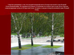 3 березки напоминают о том, что каждый четвертый житель Белоруссии погиб в го