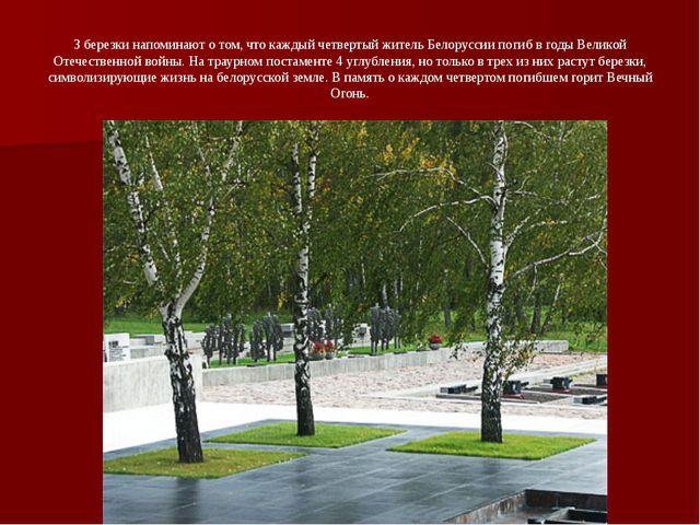 3 березки напоминают о том, что каждый четвертый житель Белоруссии погиб в го...