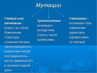 Мутации Генные или точковые - влекут за собой Изменения структуры строения бе