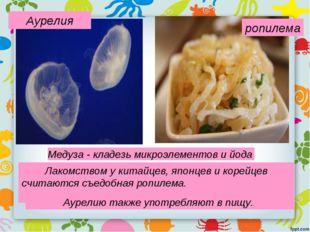Медуза - кладезь микроэлементов и йода Лакомством у китайцев, японцев и корей