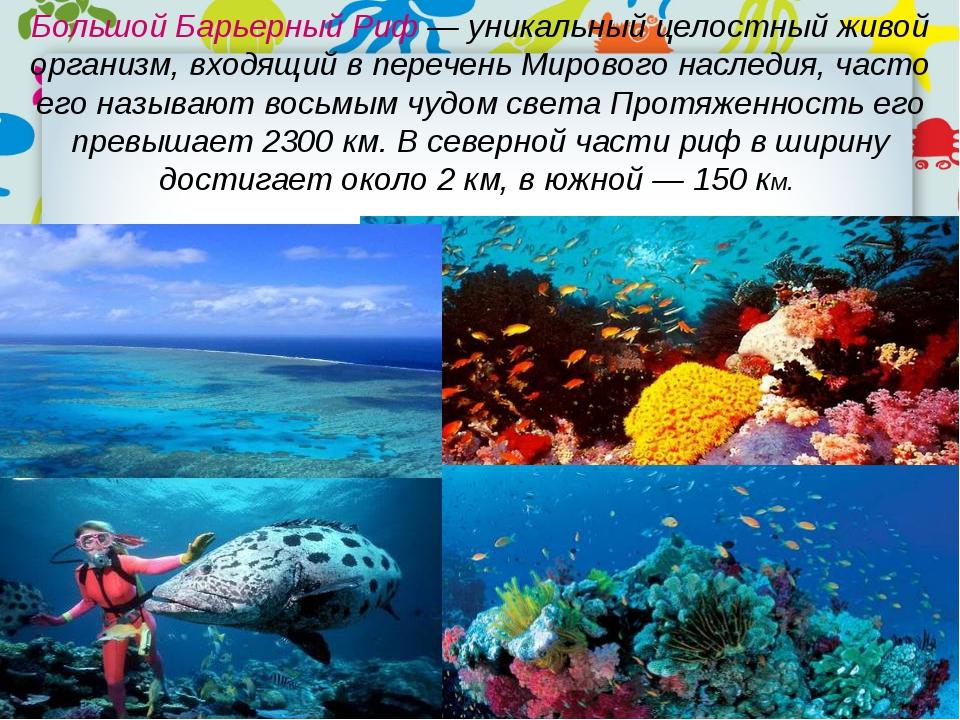 Большой Барьерный Риф — уникальный целостный живой организм, входящий в переч...