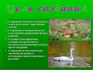 Сохранение болотного комплекса озер и водотоков с окрестными лесами Сохранени