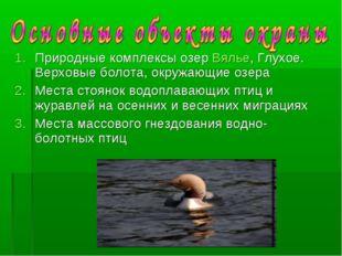 Природные комплексы озер Вялье, Глухое. Верховые болота, окружающие озера Мес