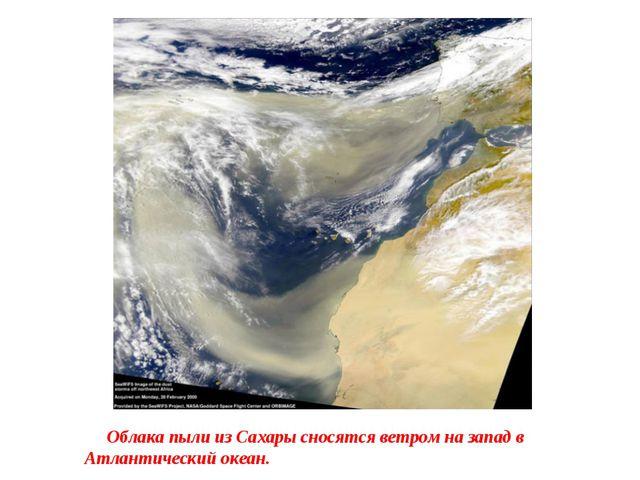 Облака пыли из Сахары сносятся ветром на запад в Атлантический океан.