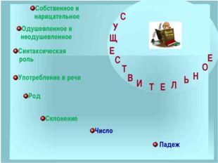 В русском языке есть такие имена существительные, которые имеют форму только