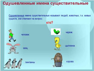 Одушевленные имена существительные называют людей, животных, т.е. живых сущес