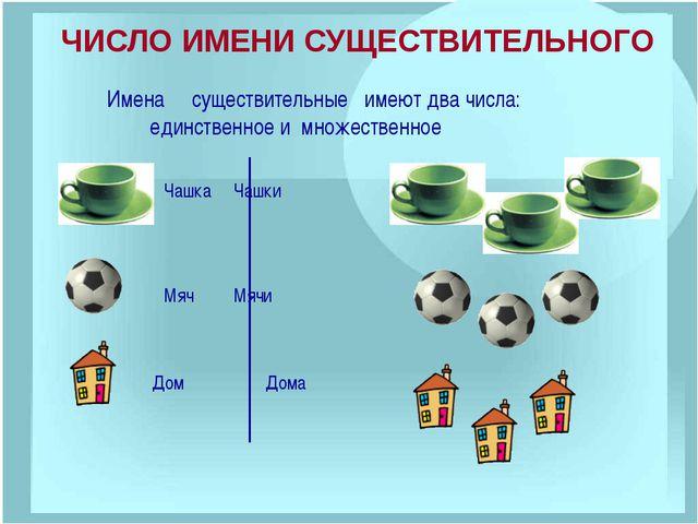СТРАНИЧКА ДЛЯ ЛЮБОЗНАТЕЛЬНЫХ В русском языке есть ряд существительных, заимст...