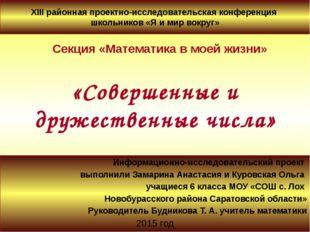 Информационно-исследовательский проект выполнили Замарина Анастасия и Куровск