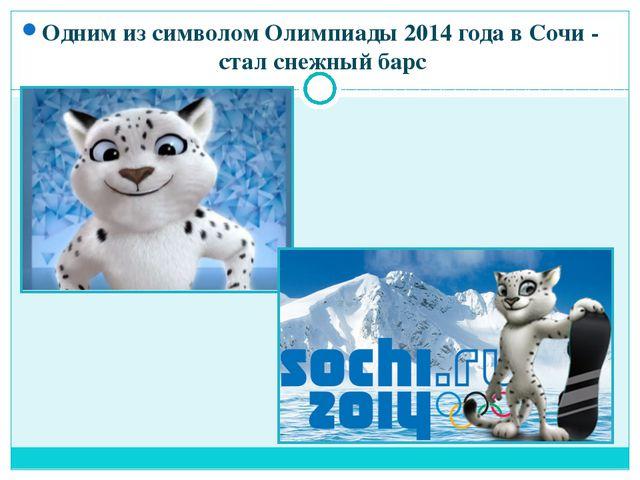 Одним из символом Олимпиады 2014 года в Сочи - стал снежный барс