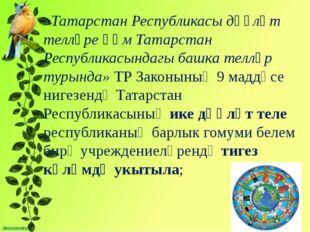 «Татарстан Республикасы дәүләт телләре һәм Татарстан Республикасындагы башка