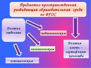 педагогическим эстетическим гигиеническим Предметно-пространственная развиваю