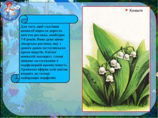Для того, щоб з насіння конвалії виросла доросла квітуча рослина, необхідно 7