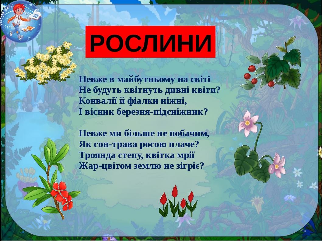 РОСЛИНИ Невже в майбутньому на світі Не будуть квітнуть дивні квіти? Конвалії...