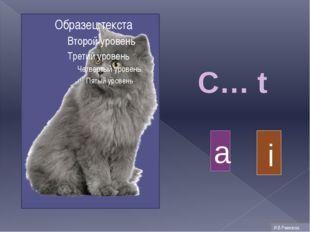 C… t a i И.В.Ремизова