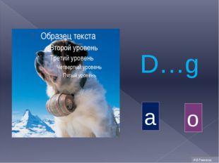 D…g o a И.В.Ремизова