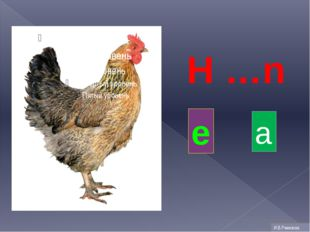H …n e a И.В.Ремизова