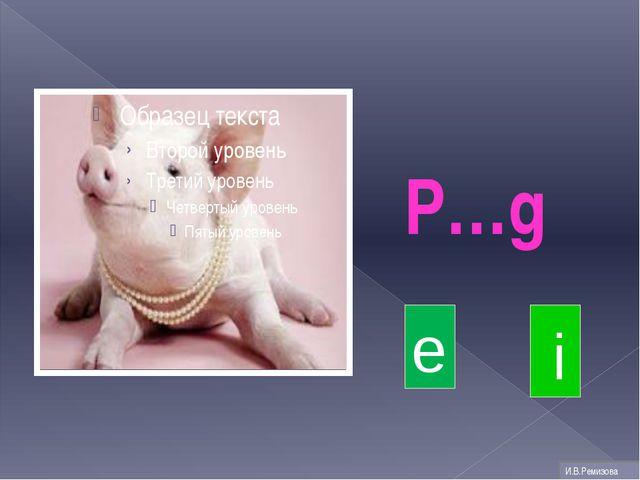 P…g i e И.В.Ремизова