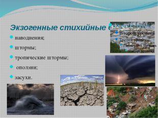 Экзогенные стихийные бедствия наводнения; штормы; тропические штормы; оползн
