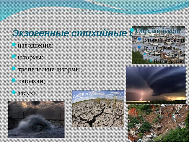 Экзогенные стихийные бедствия наводнения; штормы; тропические штормы; оползн...