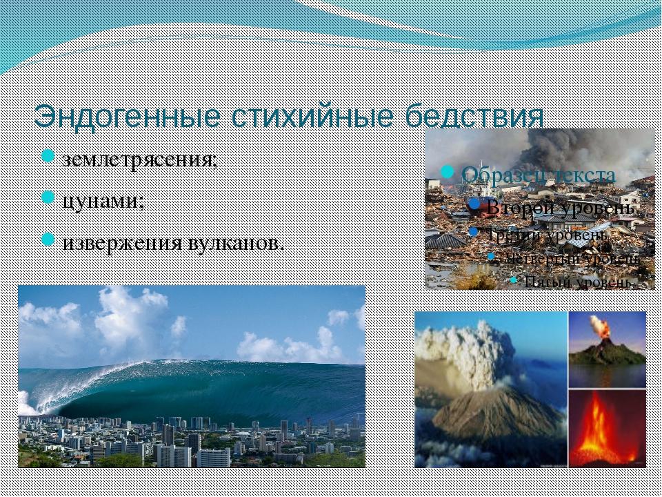 Эндогенные стихийные бедствия землетрясения; цунами; извержения вулканов.