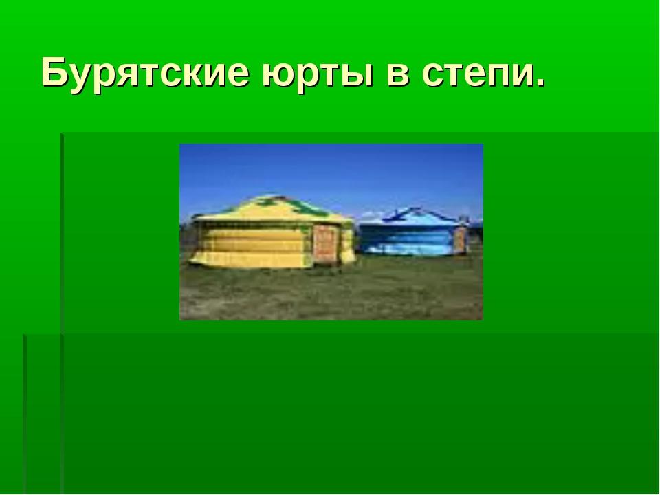 Бурятские юрты в степи.