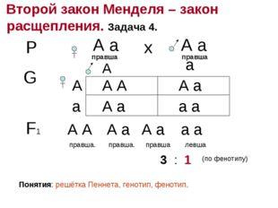 Второй закон Менделя – закон расщепления. Задача 4. Р А а правша А а правша