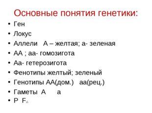 Основные понятия генетики: Ген Локус Аллели А – желтая; а- зеленая АА ; аа- г