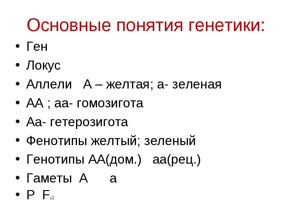 Основные понятия генетики: Ген Локус Аллели А – желтая; а- зеленая АА ; аа- г...