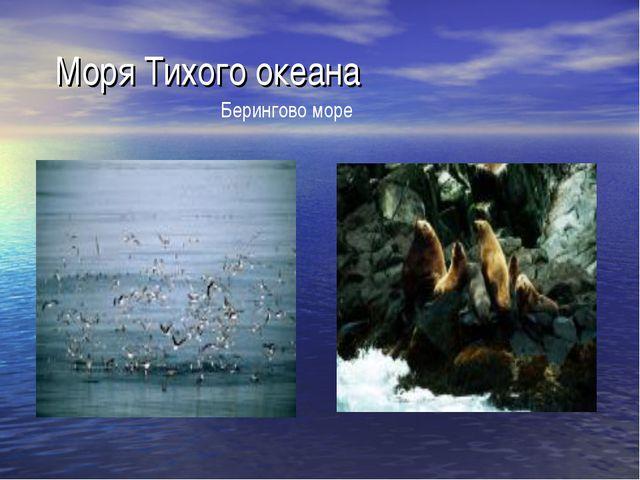 Моря Тихого океана Берингово море