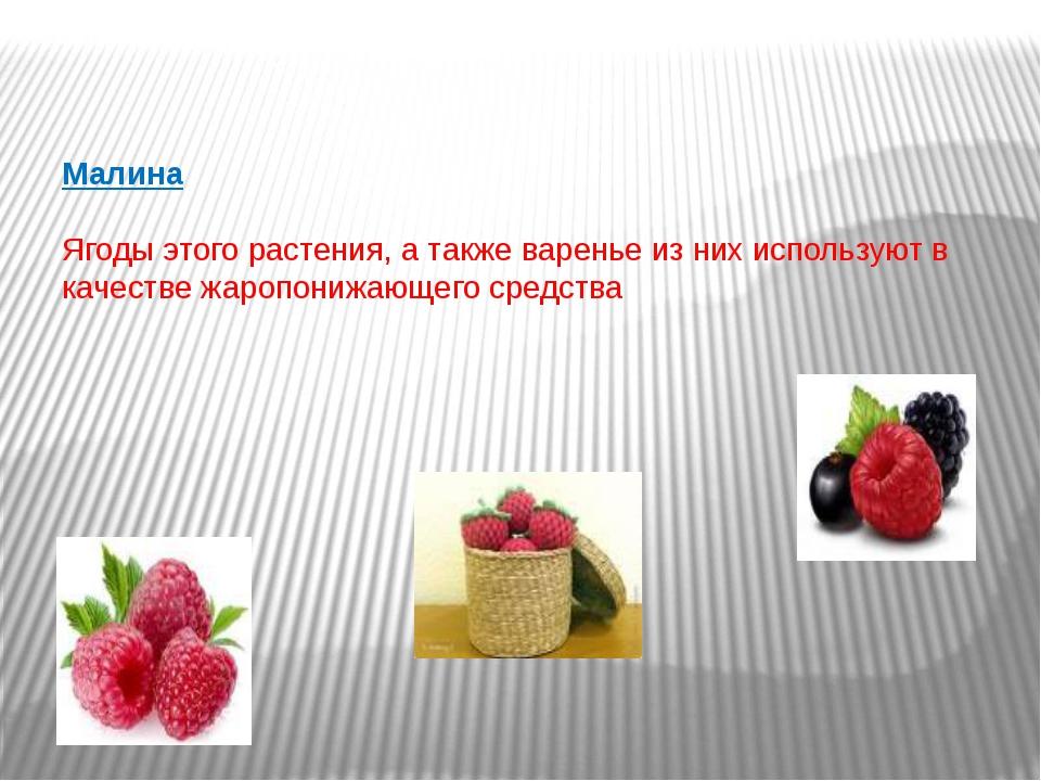 Малина Ягоды этого растения, а также варенье из них используют в качестве жа...