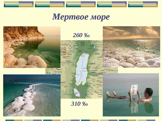 260 ‰ 310 ‰ Мертвое море