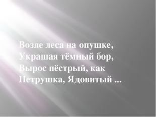 Возле леса на опушке, Украшая тёмный бор, Вырос пёстрый, как Петрушка, Ядови