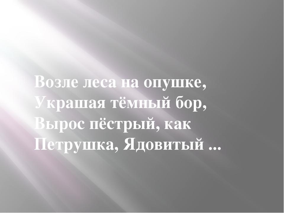 Возле леса на опушке, Украшая тёмный бор, Вырос пёстрый, как Петрушка, Ядови...
