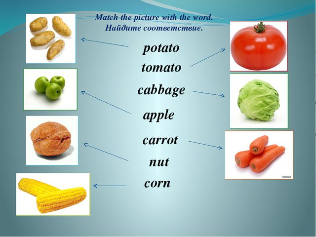 potato tomato cabbage apple carrot nut corn Match the picture with the word....